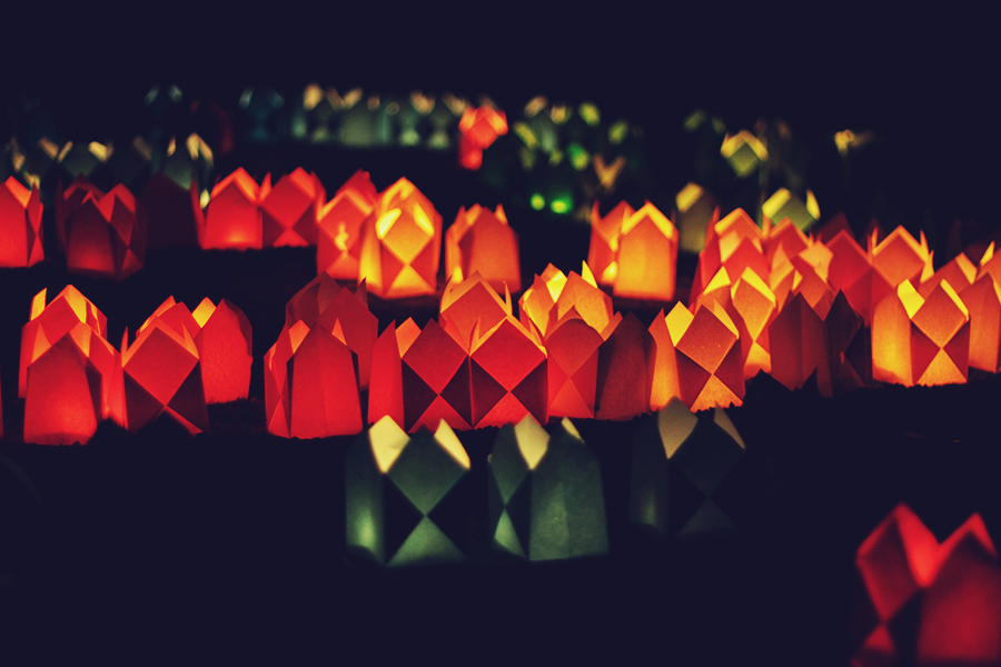 candle_lights_in_the_park_2