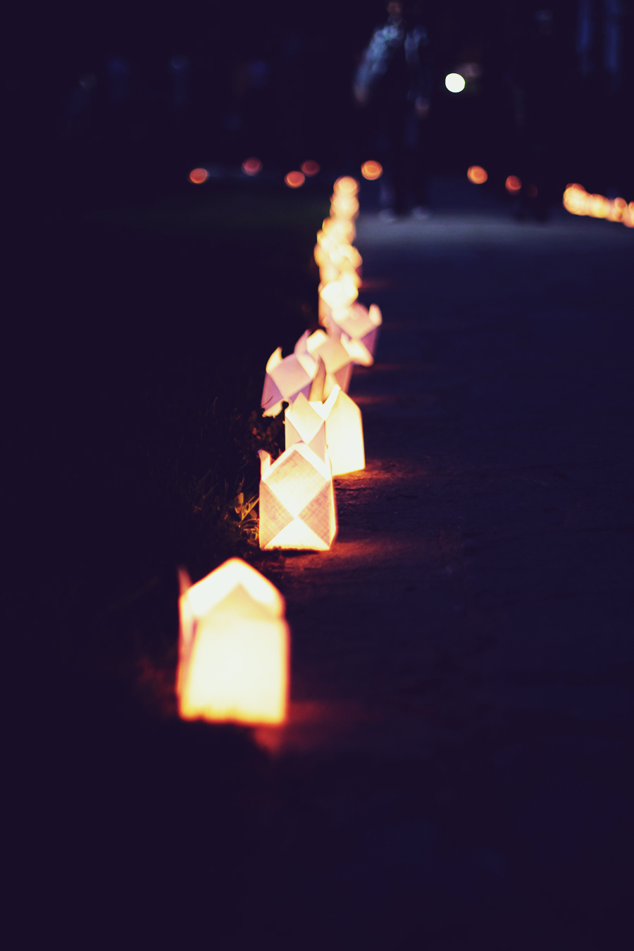 candle_lights_in_the_park_3