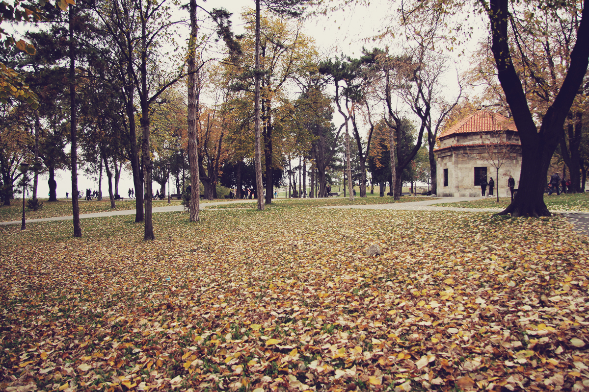 autumn-in-kalemegdan-park-belgrade