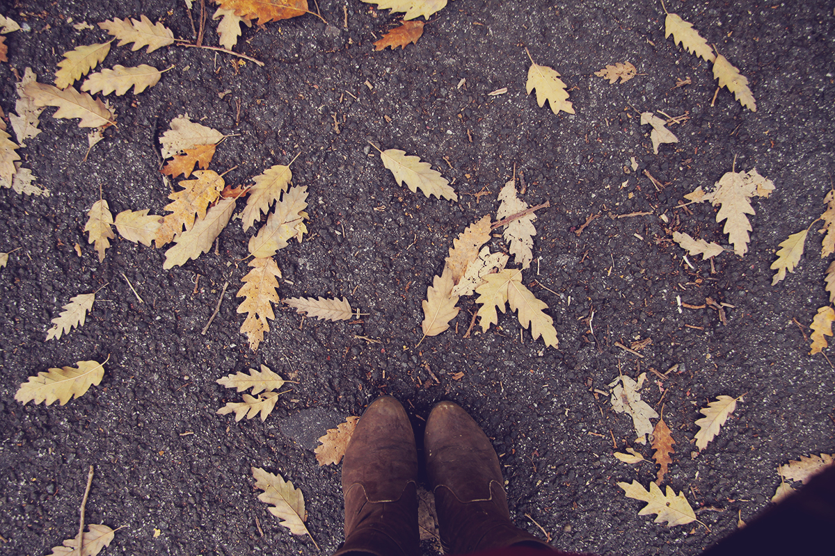 fall-at-my-feet