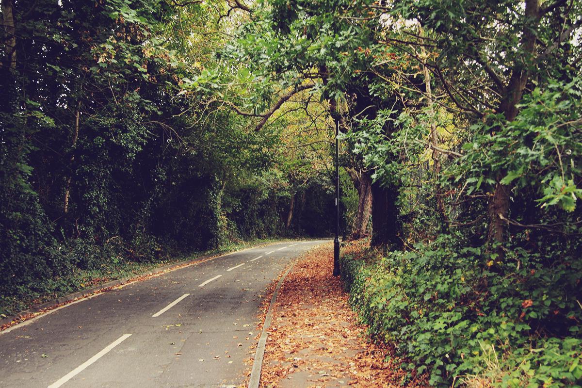 london-autumn-in-enfield