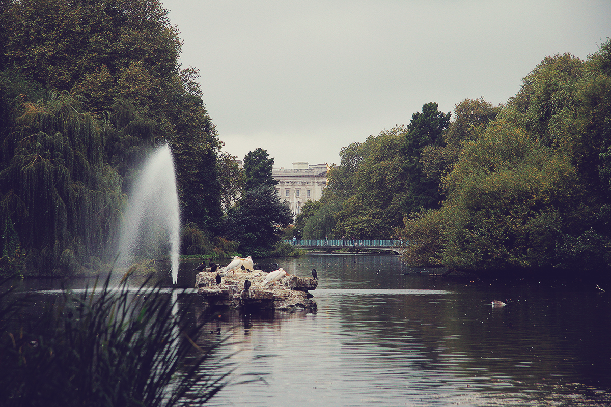 london-buckingham-palace-view-from-st-jamess-park