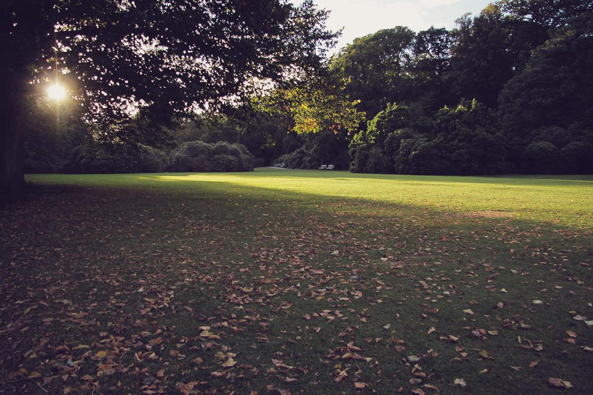 london-kenwood-house-lawn