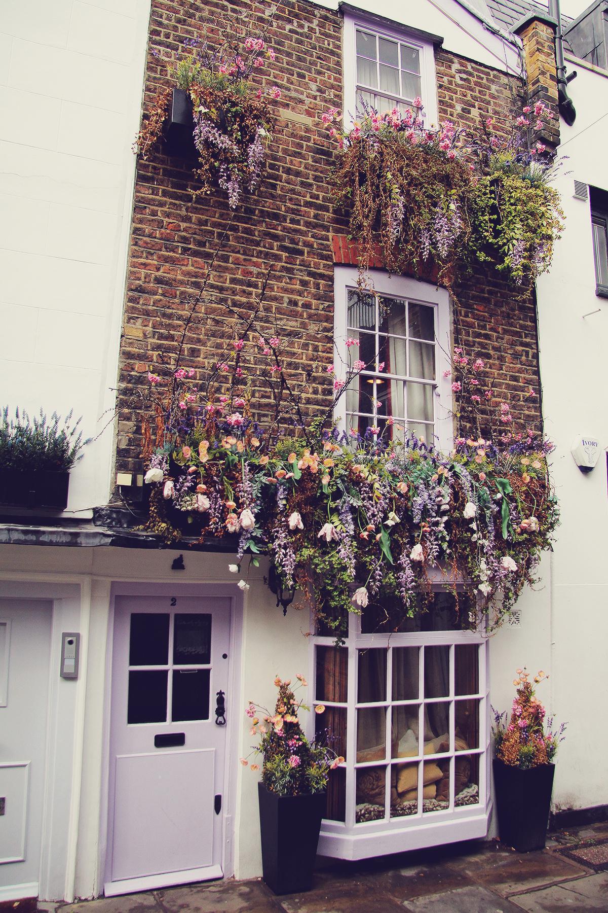 london-street-flowers-in-hampstead
