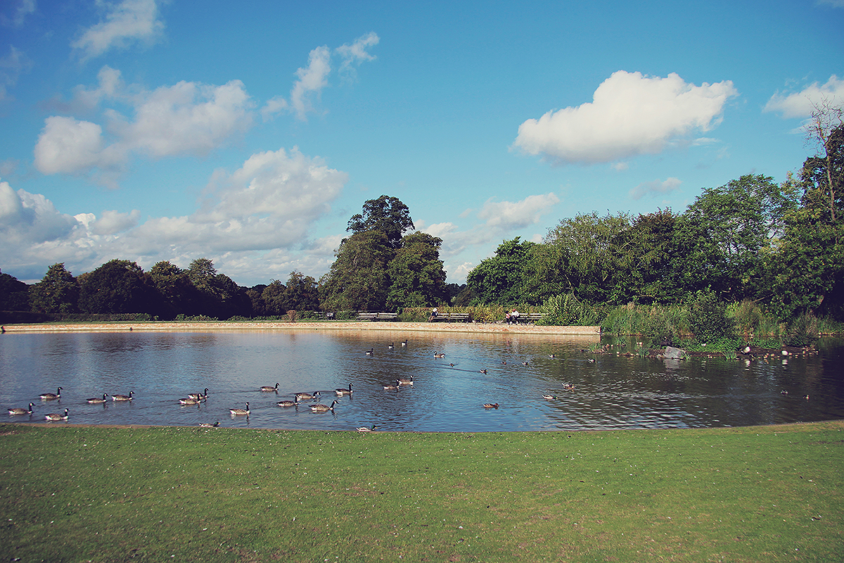 london-the-lake-at-forty-hall