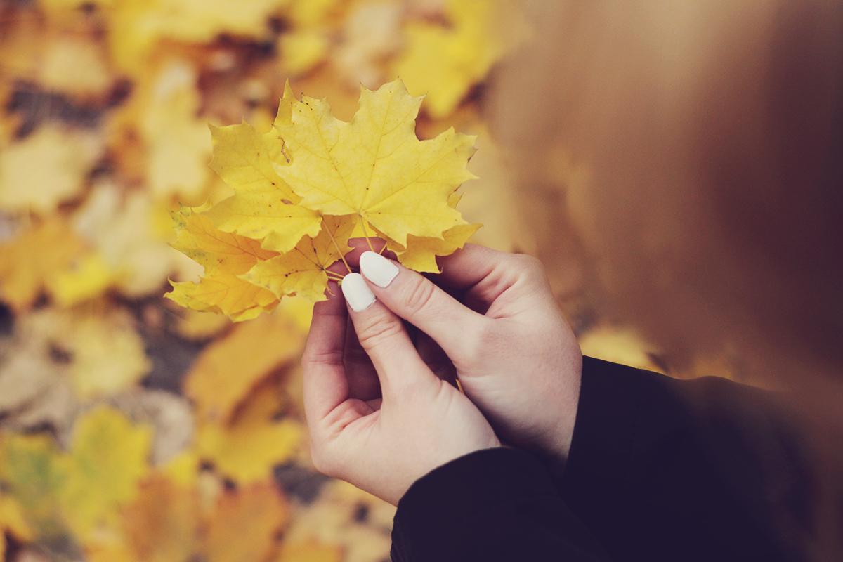 autumn leafs, white nails, autumn