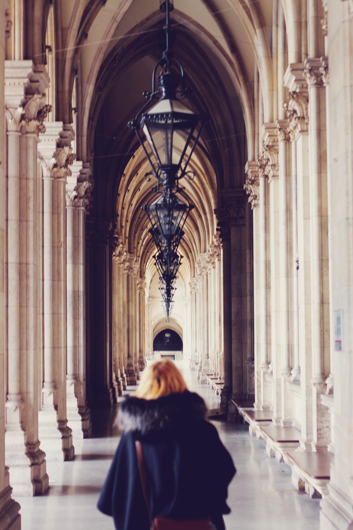 Vienna, Rathaus, travel, winter