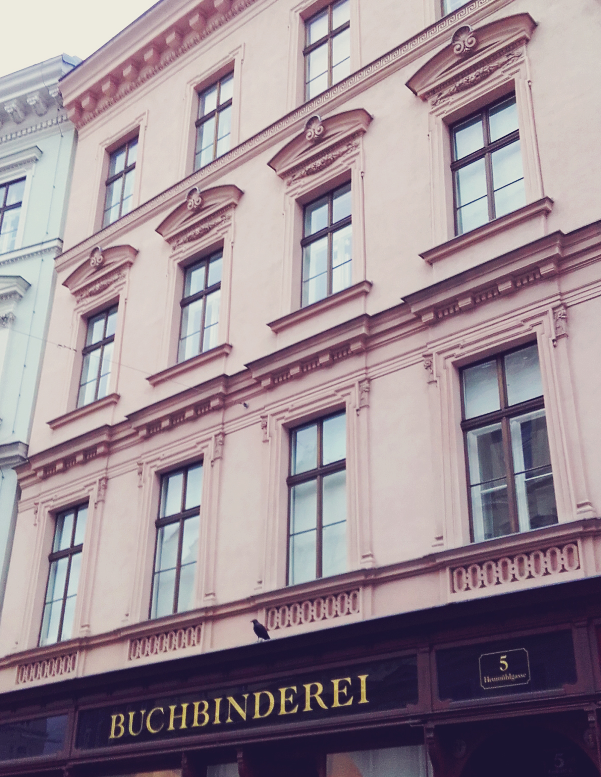 Vienna, building, cute, travel
